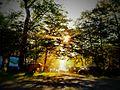 美笛キャンプ場(林間サイト) - panoramio.jpg