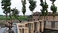 老弥酸那的房子和杏树 - panoramio.jpg