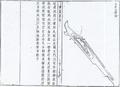 自生火銃.png