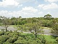 葛西臨海公園 - panoramio (11).jpg