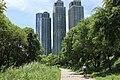 양재천과 삼성 타워팰리스 Samsung Tower Palace and Yangjaecheon Stream 7.jpg