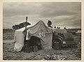 -Migrant Pea Picker's Makeshift Home, Nipomo, California- MET DP238419.jpg