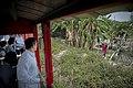 04.14 總統乘坐五分車至雲林「虎尾糖廠」,沿途熱情民眾揮手向總統問好 (34028535525).jpg