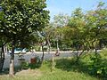 08645jfIntramuros Anda Circle Bonifacio Drive Port Area Manilafvf 42.jpg