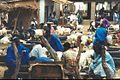 1014059-Goatmarket in Abuko-The Gambia.jpg