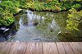 140320 Shimeiso Shimabara Nagasaki pref Japan04s3.jpg