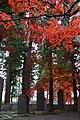 171104 Hoonji Morioka Iwate pref Japan14n.jpg