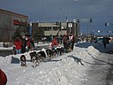 2008 Iditarod Anchorage (2311621971).jpg