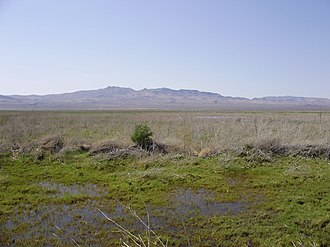 Humboldt Wildlife Management Area - The salt marsh at the end of the Humboldt River within Humboldt WMA.