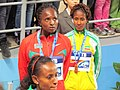 2012 IAAF World Indoor by Mardetanha3268.JPG