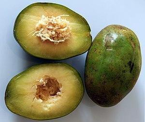 Spondias - Spondias dulcis, fruit, section and seed