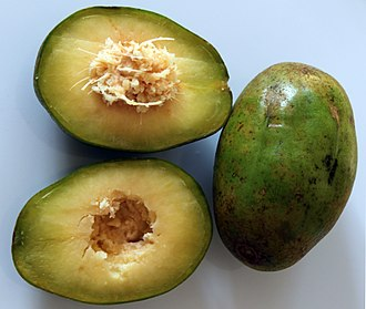 Spondias - Spondias dulcis, fruit, section and seed