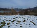 20150219 72 Wienerwaldsee (Large) (16580544761).jpg