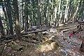2017-04-10 04-14 Gardasee 054 Malcesine, Monte Baldo (34235328961).jpg