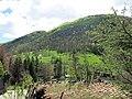 273 La muntanya de Sant Antoni des del puig de les Relíquies (Camprodon).JPG