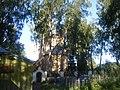 2 - panoramio - васильки (1).jpg