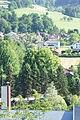 2 Sommerlinden (Kirchberg an der Pielach) 002.JPG