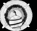 342d Bombardment Squadron - SAC - Emblem.png