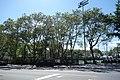 53rd St 11th Av td (2019-06-14) 08 - DeWitt Clinton Park.jpg