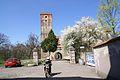 67viki Zamek w Prochowicach. Foto Barbara Maliszewska.jpg