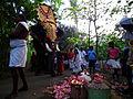 910 A Pooram Yathra By ManojK.JPG