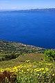 Açores 2010-07-19 (5049657421).jpg