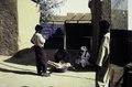 ASC Leiden - van Achterberg Collection - 01 - 52 - Deux hommes debout et deux assis dans la cour de l'hôtel Agreboun - Agadez, Niger, novembre 1990 - janvier 1991.tif