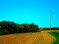ATC Power Line - panoramio (38).jpg