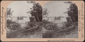A Lonely lunch, Thousand Islands, Canada, from Robert N. Dennis collection of stereoscopic views.png