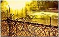 A Steamy Sunrise at Baldwin's Pond (24971896885).jpg