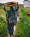 A plain village woman.jpg