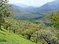 A view of Moyar valley from Sigur Plateau AJTJohnsingh.jpg