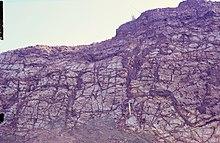 Deze rotswand vertoont donkere aders van gemobiliseerd en neergeslagen ijzer in kaolien basalt in Hungen, Vogelsberg, Duitsland.