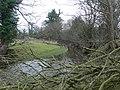 Afon Terrig - geograph.org.uk - 691388.jpg