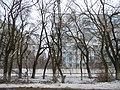 After icing, Odessa Oblast, Ukraine 05.JPG