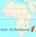 Aire couverte par la flore de Madagascar.jpg