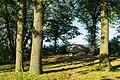 Albersdorf Steingrab Brutkamp-04.jpg