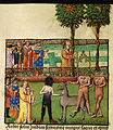 Alexander and his companions consult the prophetic trees of the Sun and the Moon; Alexander meeting a black-legged monster man, a horse-lion and headless men (f. 84v.).jpg