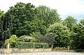 All Saints Church, Nazeing, Essex, England ~ wall and trees oposite churchyard at east.JPG