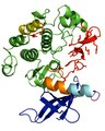 File:Allosteric-Communication-Occurs-via-Networks-of-Tertiary-and-Quaternary-Motions-in-Proteins-pcbi.1000293.s011.ogv