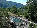 Alpes Haute-Provence Digne Col-Du-Jas Ichtyosaure 13072014 - panoramio.jpg