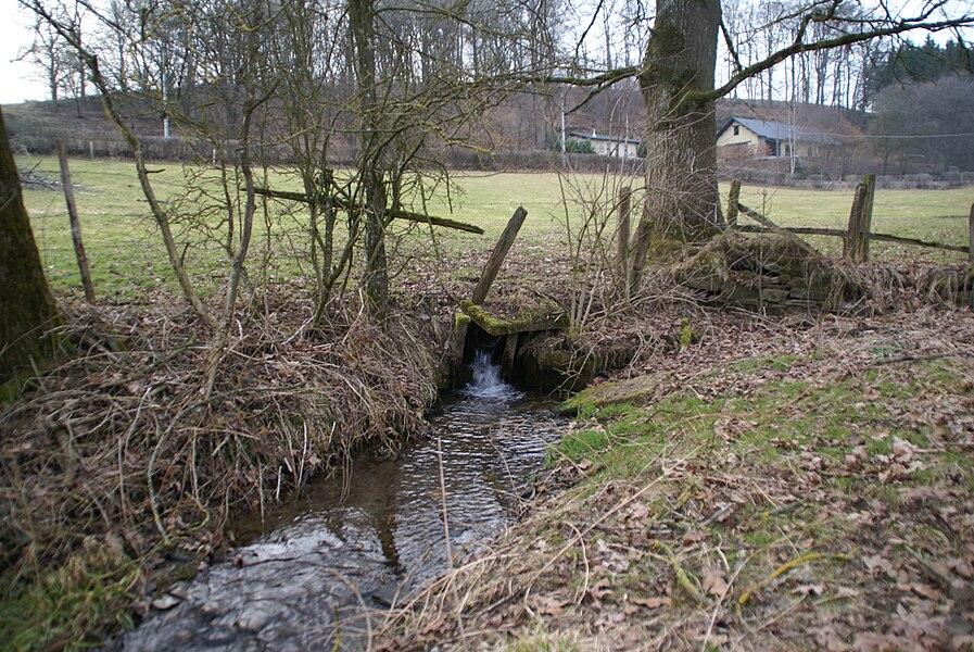 Alster (Burg-Reuland) (Belgium): Landscape with source