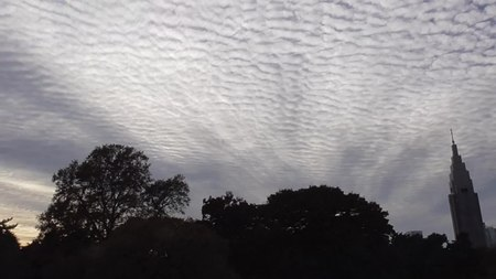 File:Altocumulus mackerel sky in Tokyo.webm