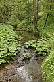 Alum House Brook - geograph.org.uk - 483991.jpg