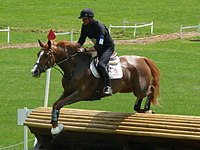 A horse and rider jumping a fence