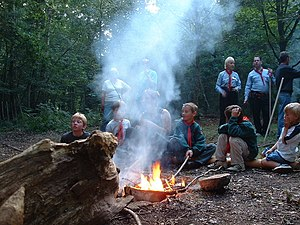 Cub Scouts (The Scout Association) - Cub Scouts around a fire at Furzefield Scout Campsite in West Sussex.