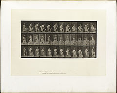 Animal locomotion. Plate 216 (Boston Public Library).jpg