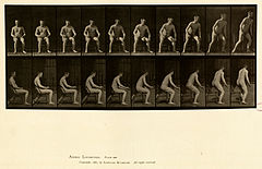 Animal locomotion. Plate 249 (Boston Public Library).jpg