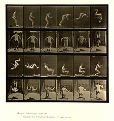 Animal locomotion. Plate 363 (Boston Public Library).jpg