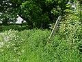 Another fingerpost - geograph.org.uk - 447680.jpg